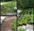 Gartengestaltung Hanglage Schön Terrasse Am Hang — Temobardz Home Blog
