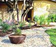 Gartengestaltung Kies Elegant Garten Mit Blumen Gestalten Garten Gestalten Mit Wenig Geld