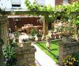 Gartengestaltung Mit Gabionen Schön 34 Genial Ideen Sichtschutz Garten Genial