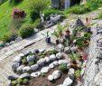 Gartengestaltung Mit Steinen Schön Kräutergarten Mai 2018