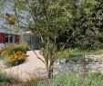 Gartengestaltung Mit Wasser Schön Kobelgartengestaltung Kobelgarten Gartengestaltung Gardening