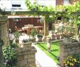 Gartengestaltung Naturstein Neu Ideen Für Grillplatz Im Garten — Temobardz Home Blog