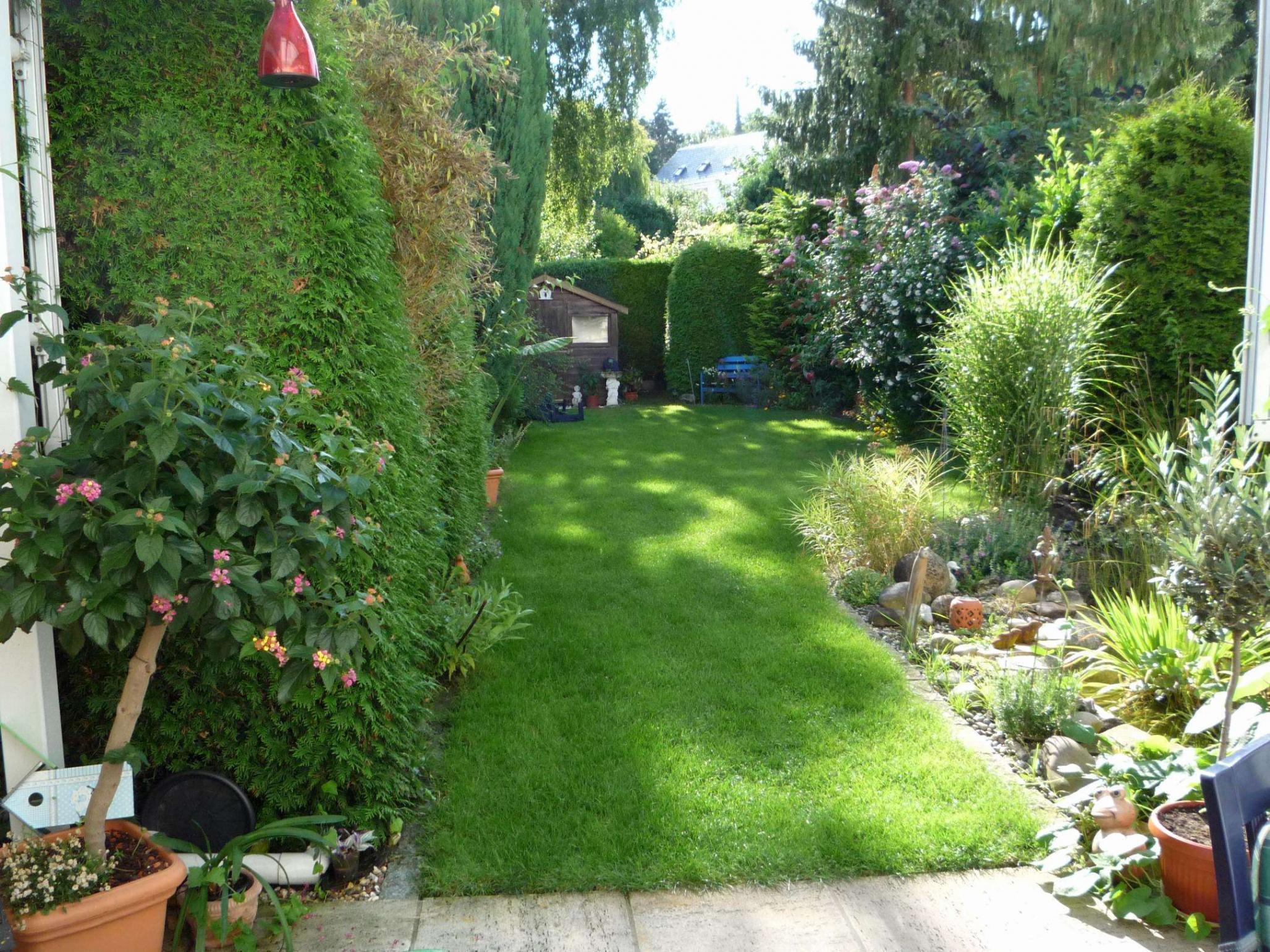 Gartengestaltung Pflanzen Luxus Pflanzen Garten Sichtschutz — Temobardz Home Blog