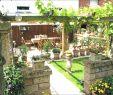 Gartengestaltung Planen Schön Reihenhausgarten Vorher Nachher — Temobardz Home Blog