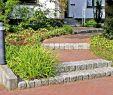 Gartengestaltung Reihenhaus Schön Pin Von Gartengestaltung Schwegmann Auf Außentreppen