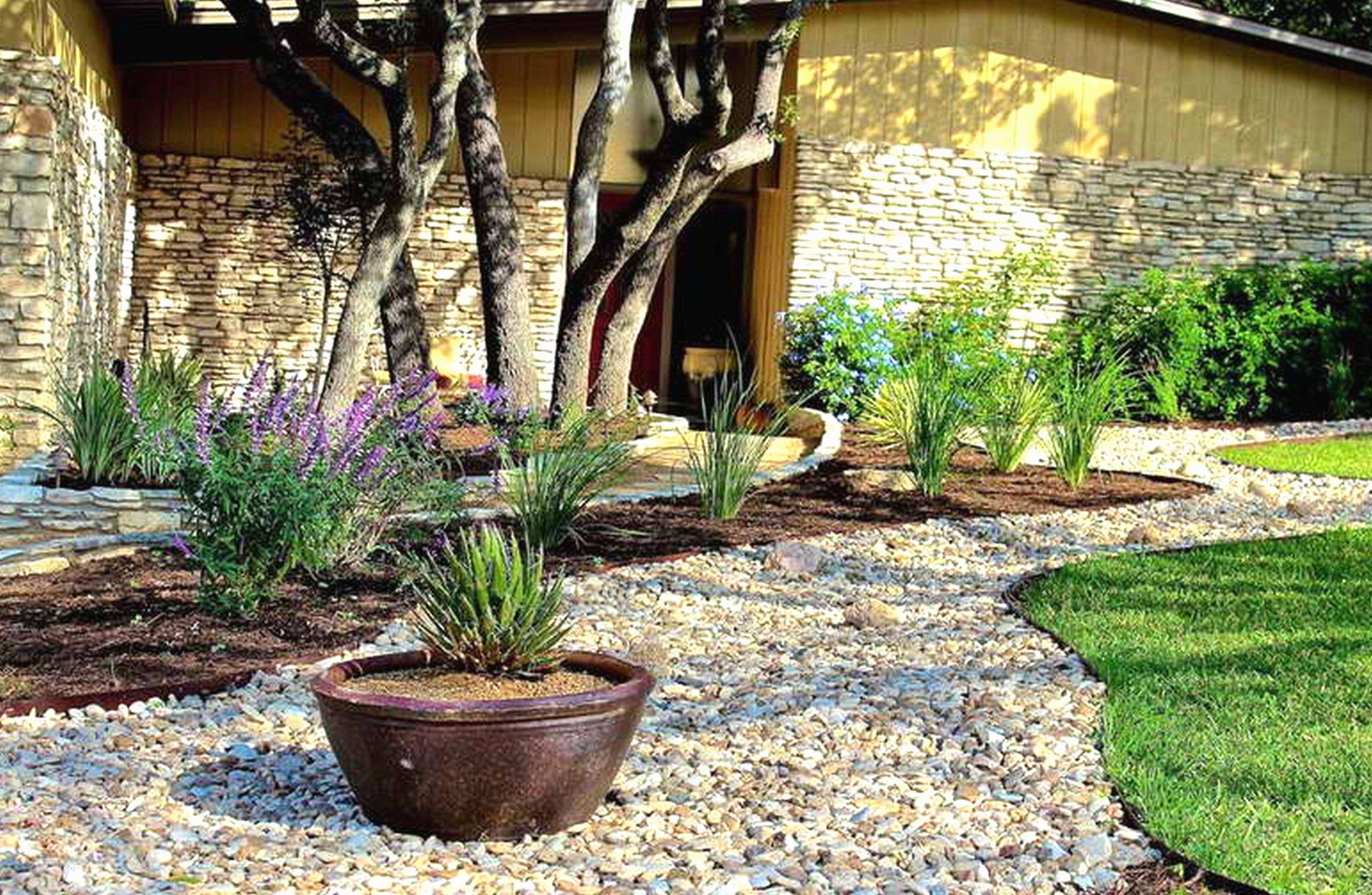42 das beste von steingarten bilder bilder kiesgarten anlegen ideen kiesgarten anlegen ideen