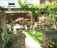 Gartengestaltung Vorgarten Frisch Wunderbar Garten Neu Gestalten Mit Kies sobhaniformaryland