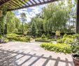 Gartengestaltungsideen Schön Gabionen Gartengestaltung Bilder — Temobardz Home Blog