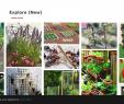 Gartenideen Luxus Phishcheck 2 0 Beta Details