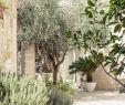 Gartenideen Mediterran Best Of Mediterranean Style Ручшие изображения 1550 в 2019 г