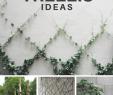 Gartenideen Mediterran Schön 15 Simply Gorgeous Trellis Ideas