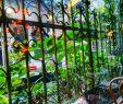 Gartenideen Modern Luxus Hier Fühlt Man Sich Wie Eine Prinzessin Oder 👸🏠🌸 Boho