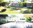 Gartenideen Ohne Rasen Inspirierend Page 28 Hotmailemaillogins