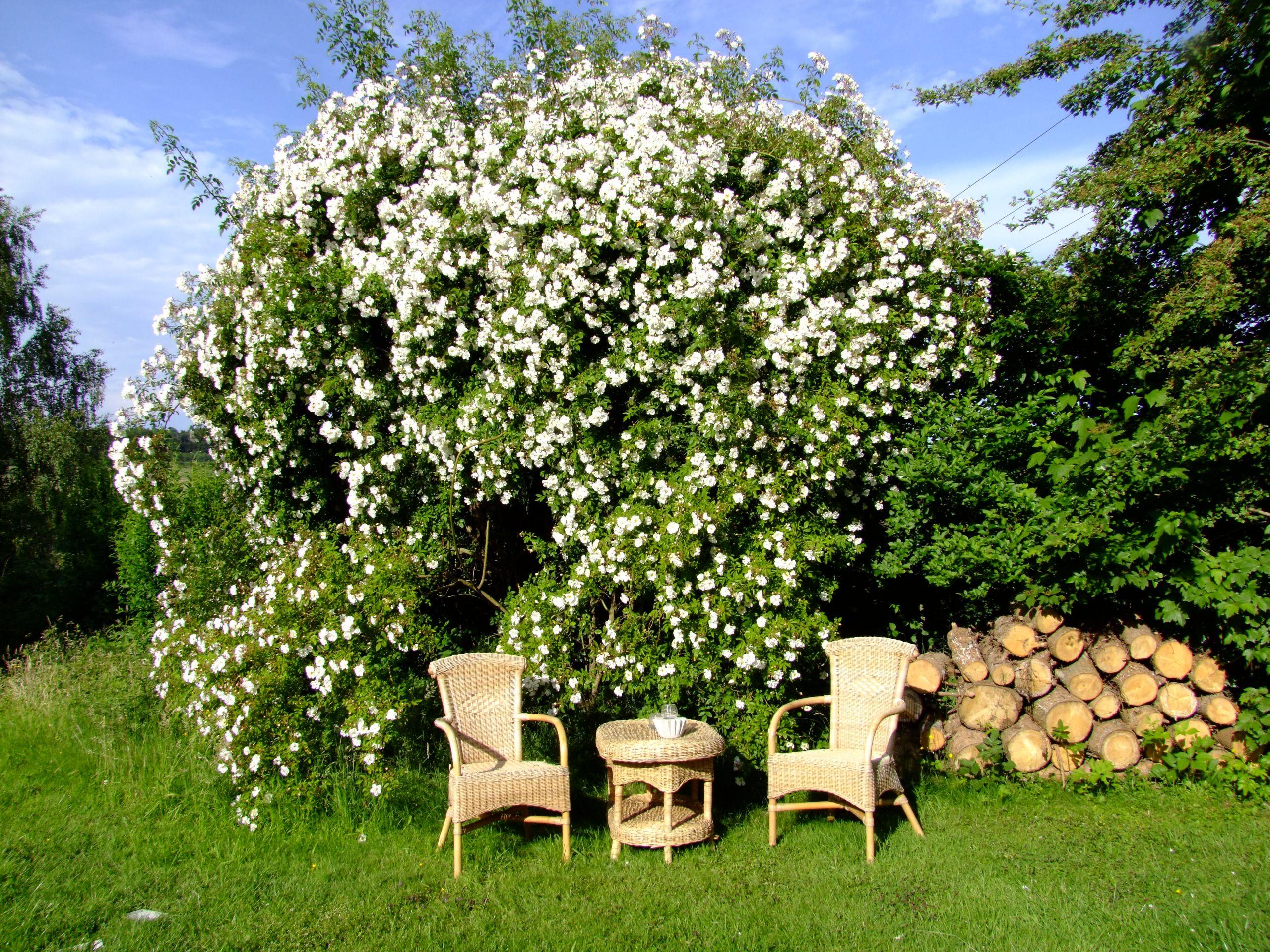 garten sitzecke gestalten ideen fr kleine groe grten zum fur den kreativ mosaikgarten lieblingsplatz