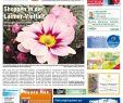 Gartenlaterne Rost Schön Kw 13 2017 by Wochenanzeiger Me N Gmbh issuu