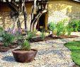 Gartenplanung Ideen Neu Garten Anlegen Beispiele