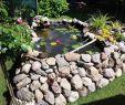 Gartenshop Fiedler Best Of Bastelideen Aus Holz Für Den Garten Inspirierend