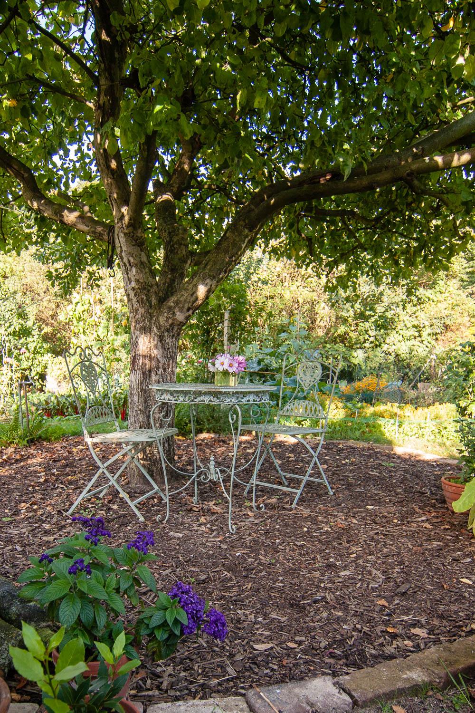 Terrasse im Garten neu gestalten Teil 1 Planung 1
