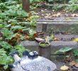 Gartenskulpturen Selber Machen Genial Fisch Keramik …