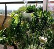 Gartenskulpturen Selber Machen Schön 27 Luxus Garten Büsche Schön