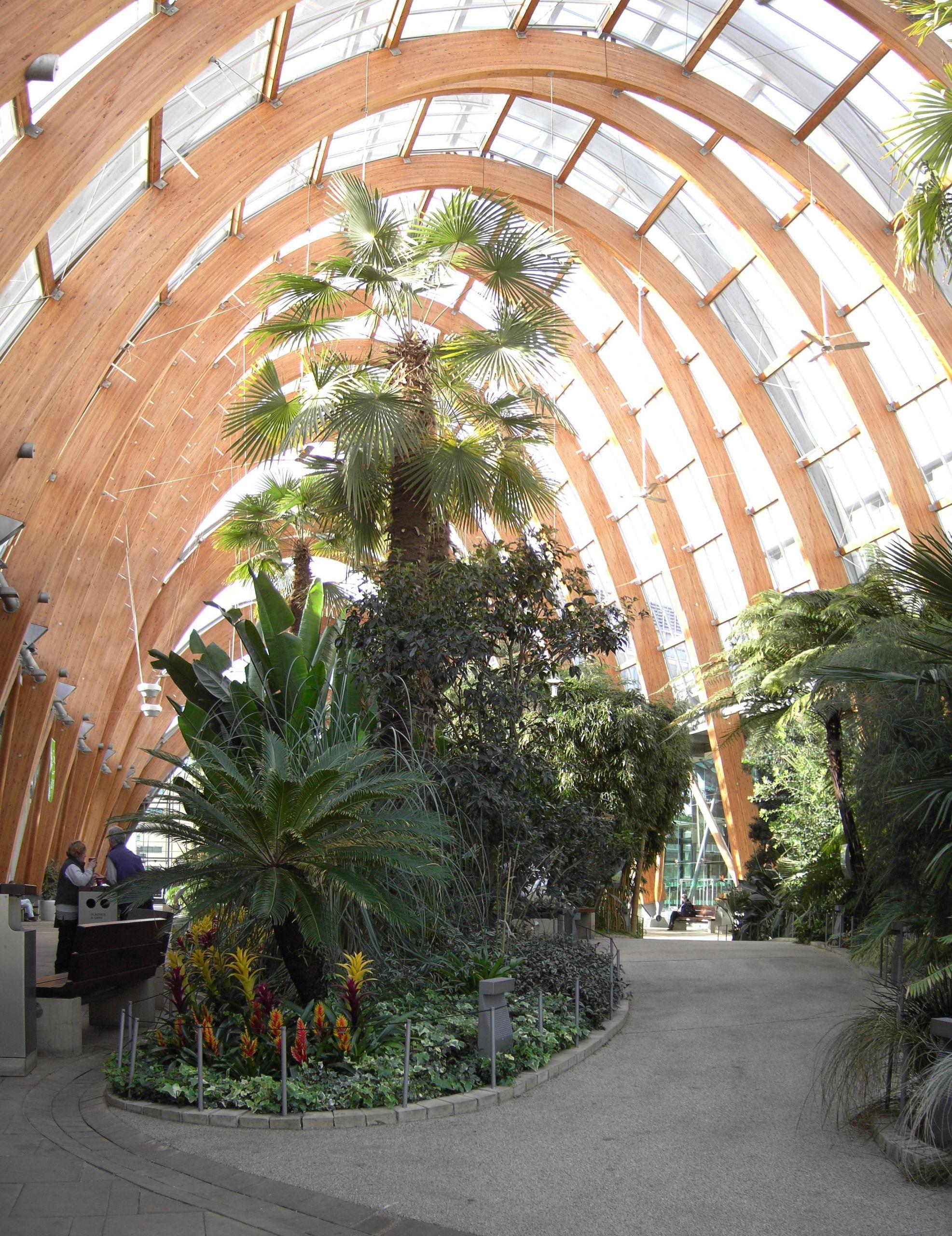 Sheffield Winter Garden