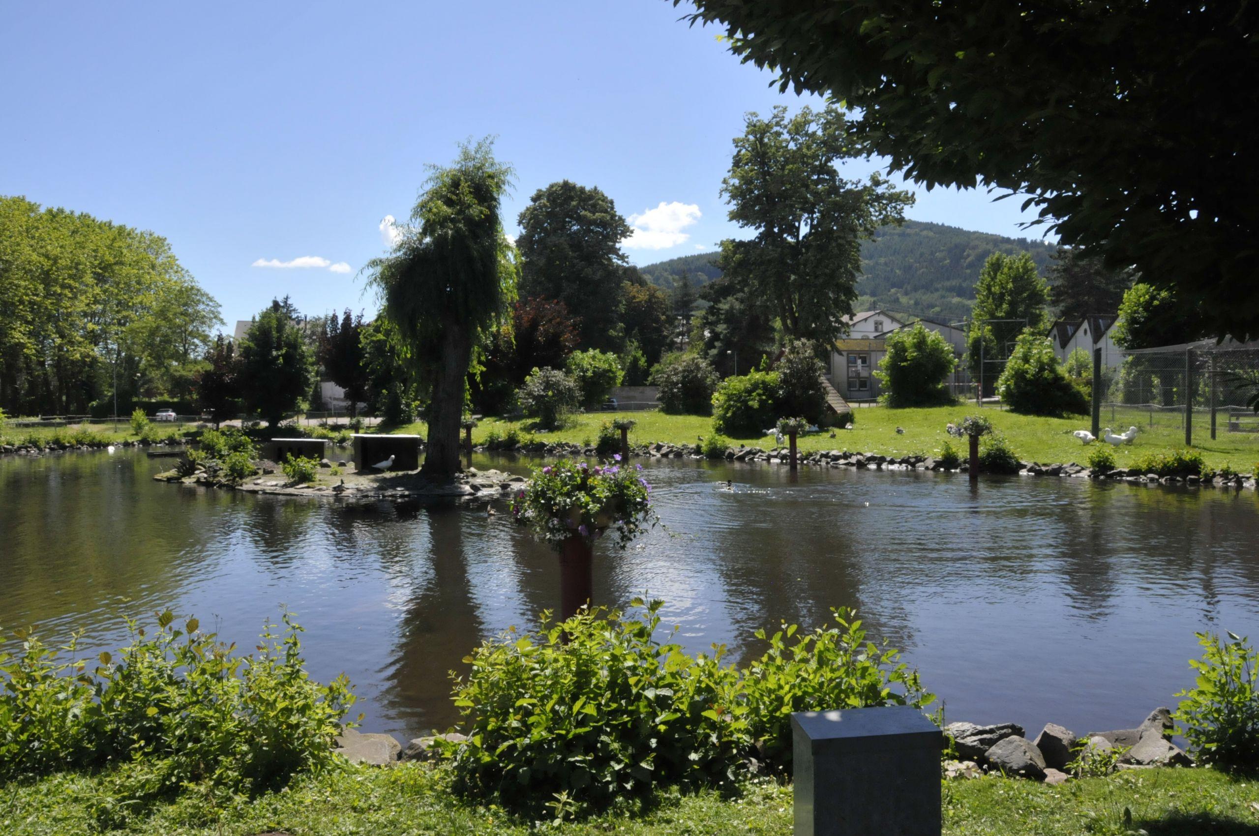 Schirmeck Teich 5 CTH