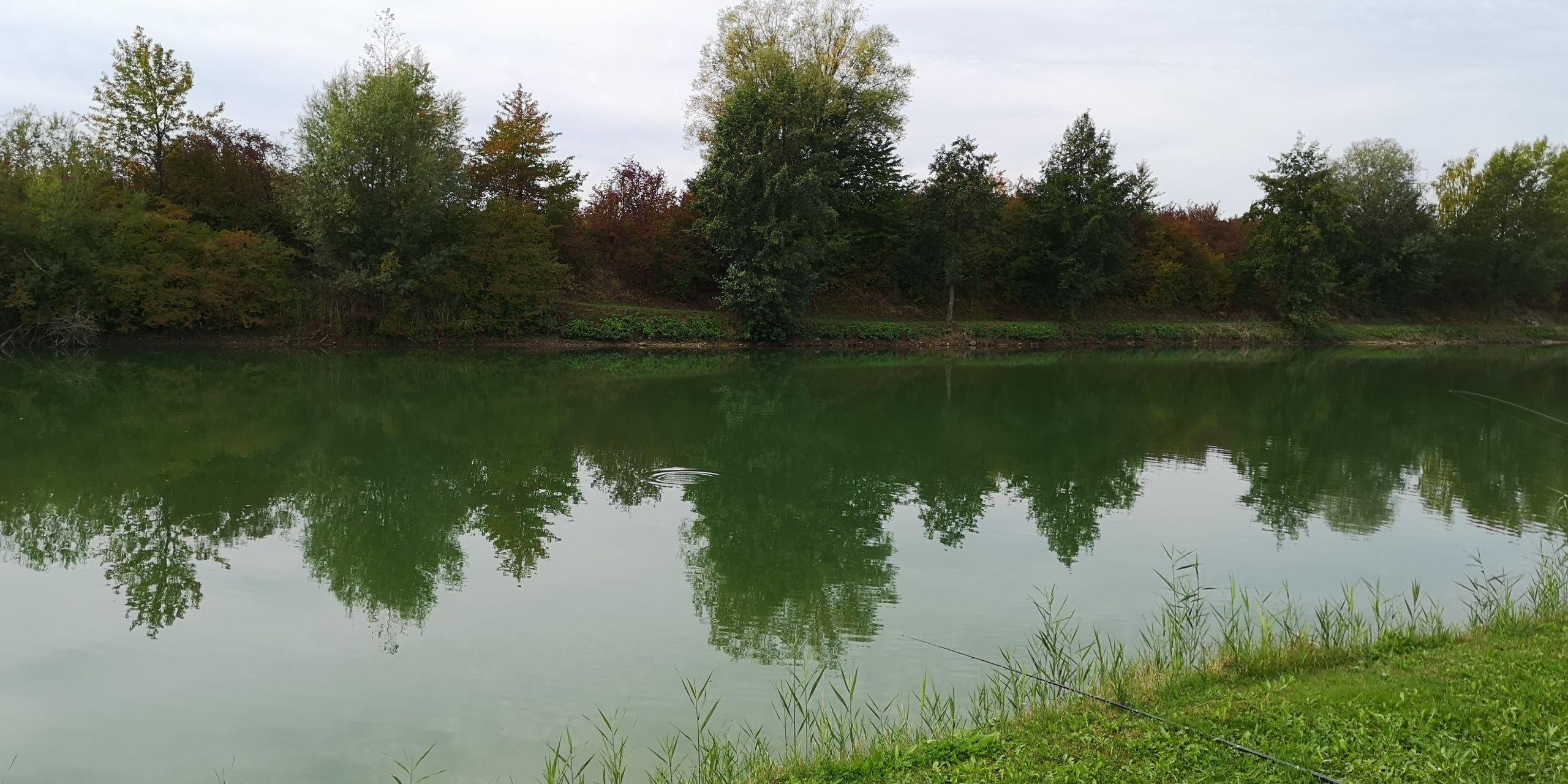 Teich Maria Seitenarm