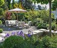 Gartenterrasse Gestalten Schön Pflanzplanung Sitzplatz Bepflanzung