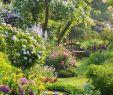 Gartentipps Frisch 25 Beautiful Small Cottage Garden Ideas for Backyard