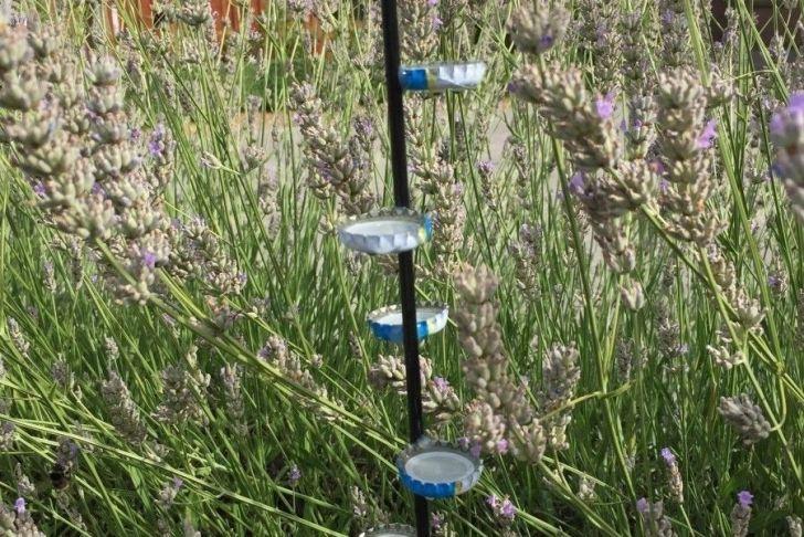 Gartenumgestaltung Einzigartig Insektentränke Mit Landemöglichkeit Bauen