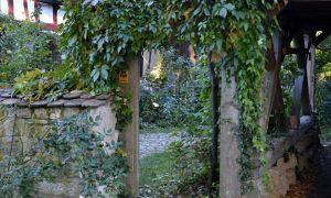 20 Neu Gartenzaun Dekorieren