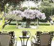 Gartenzubehör Best Of Kreativne Vrtne Ideje I Slike Koje će Vas Motivirati U Vrt