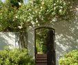 Gartenzubehör Elegant Kreativne Vrtne Ideje I Slike Koje će Vas Motivirati U Vrt