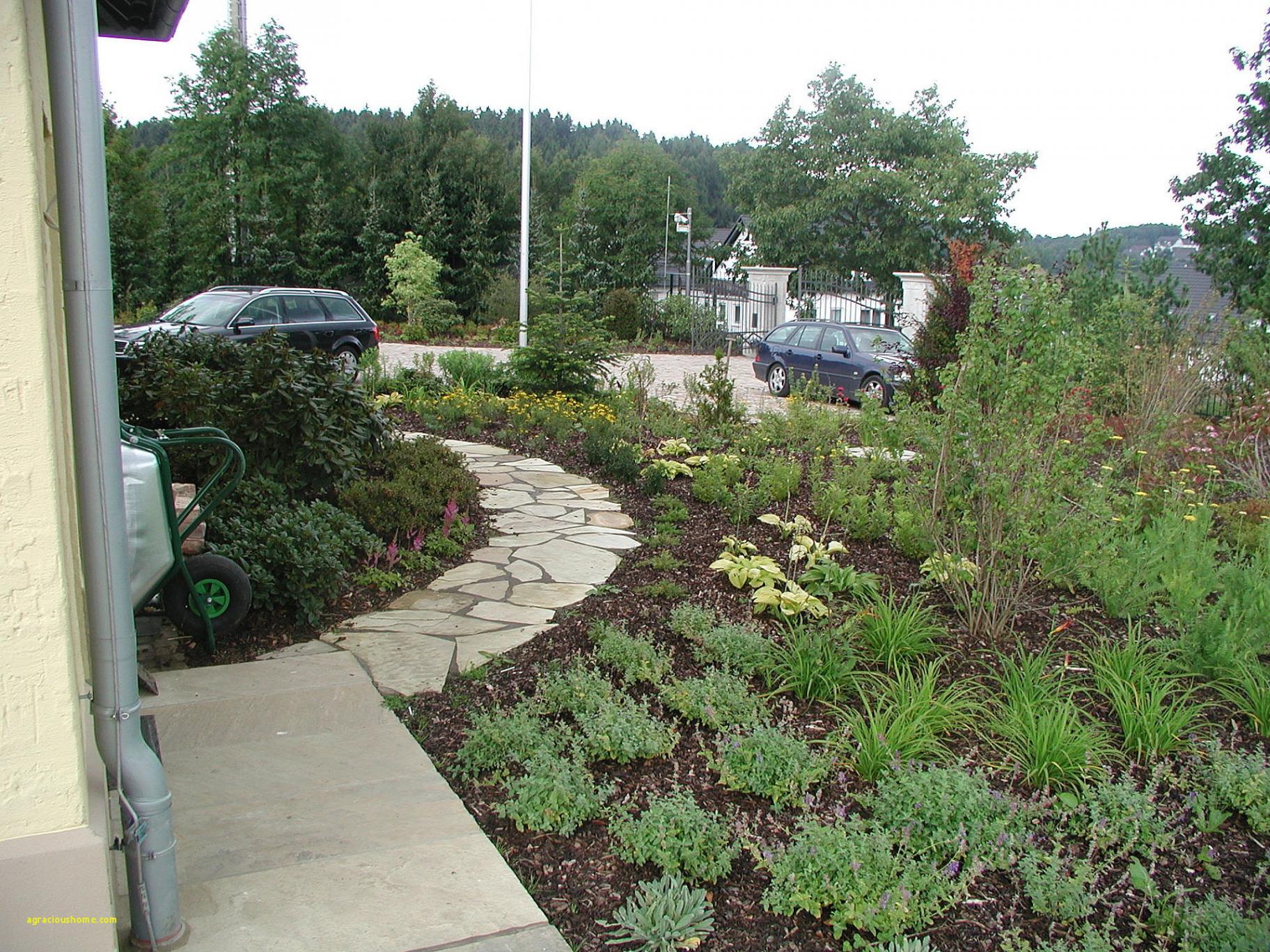 vorgarten gestalten nordseite vorgarten gestalten nordseite vorgarten gestalten nordseite