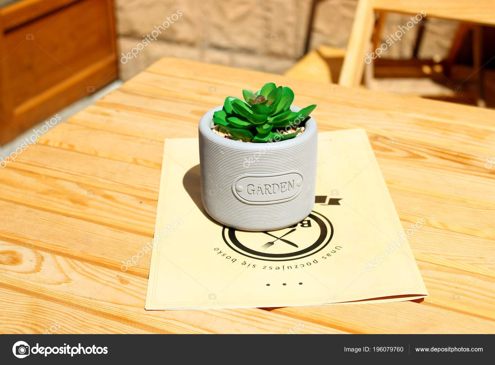 garten dekoration frisch decoration table cafe form flower pot plant sunny day of garten dekoration