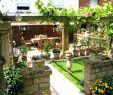Grillplatz Garten Ideen Frisch Grillplatz Garten Ideen — Temobardz Home Blog