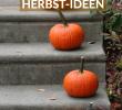 Halloween Deko Fuer Draussen Neu Die Schönsten Wohn Und Deko Ideen Für Den Herbst Herbst