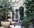 Balkon Gestalten Mediterran Frisch Die 313 Besten Bilder Von Garten Terrasse In 2020