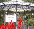 Garten Deco Best Of Одесса борется с инсуРьтом Новости Одессы