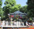 Garten Deco Luxus БеспРатная туристическая помощь в Одессе стартует новый