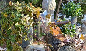 31 Inspirierend Gartendeko Selber Bauen