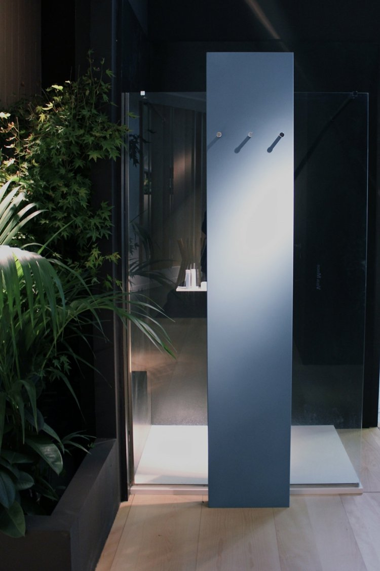 begehbare dusche stahlblau idee pflanzen bad deko duschsystem