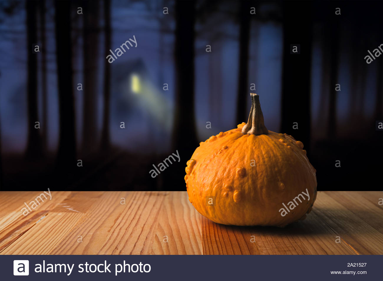 orange halloween pumpkin on a spooky night forest background copy space on the left 2A