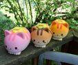 Halloween Sachen Einzigartig Ibloom Nyan Cat Squishy Collection