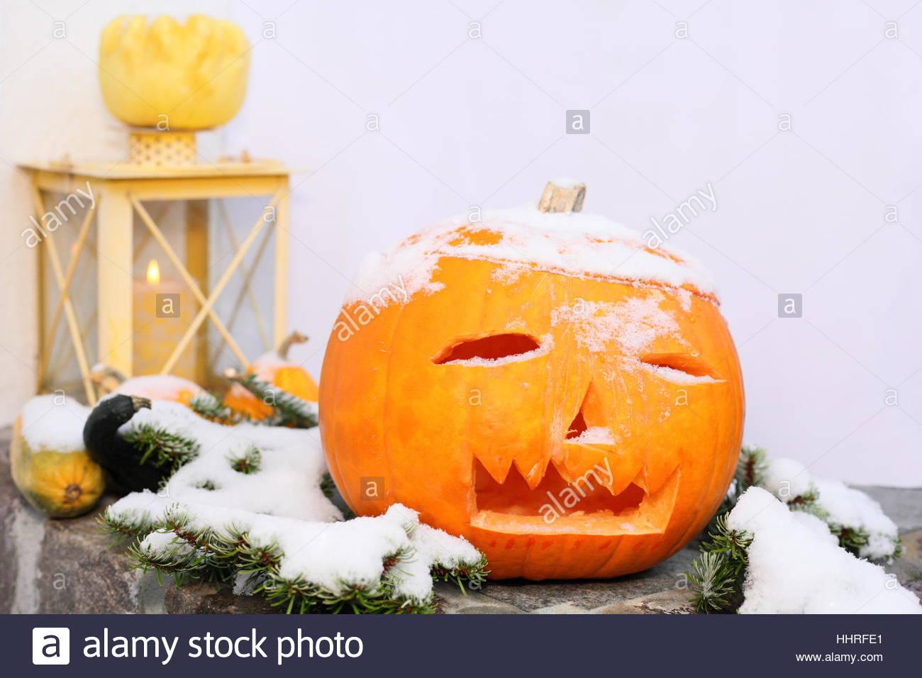 halloween pumpkin enthusiasm amusement enjoyment joy gag joke pleasure HHRFE1