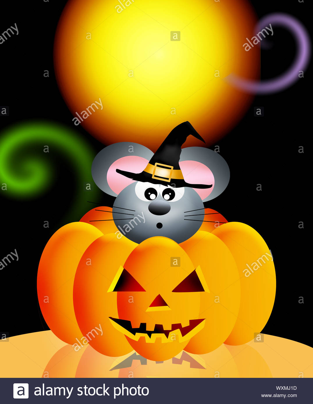 mouse in the pumpkin WXMJ1D