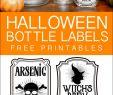 Halloween Schminke Best Of 127 Best Halloween Images