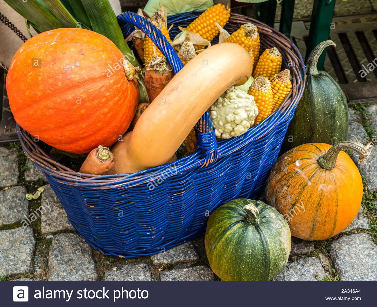 pumpkin basket deco 2A346A4