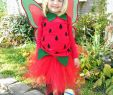 Halloween Verkleidung Luxus Diy Pottery Barn Kids Strawberry Fairy Halloween Costume