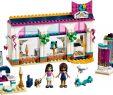 Haus Dekoration Inspirierend ≡ Конструктор Lego Friends Магазин аксесуарів Андреа